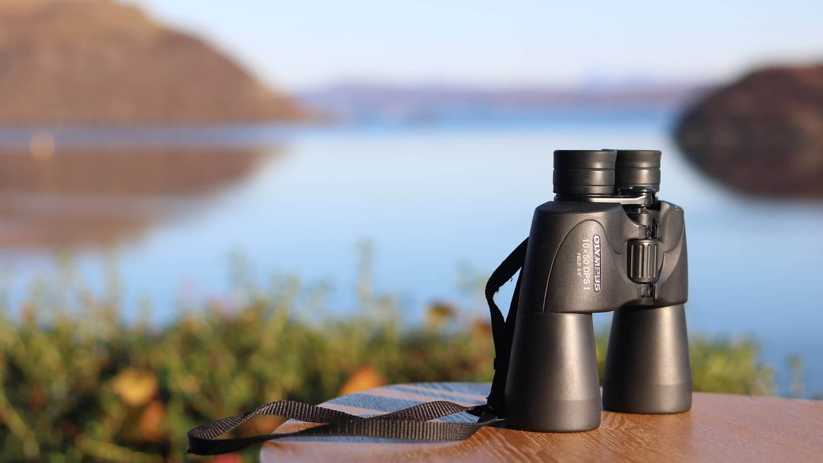 Air an Oir is perfect for birdwatching with sea eagles nesting a mile away